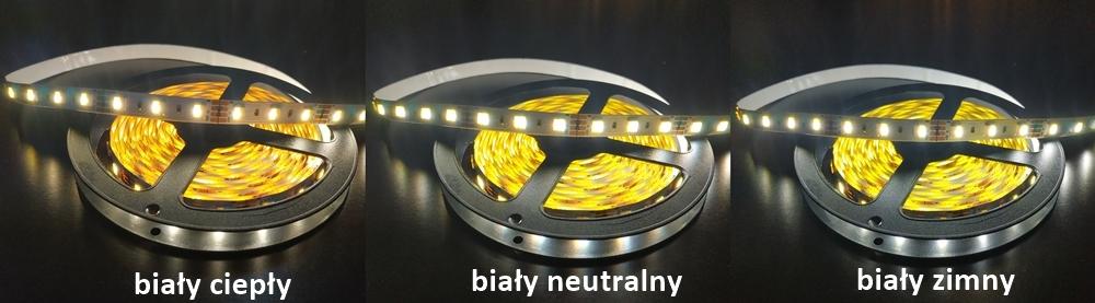 tasma LED CCT 12V ze zmienną barwą świecenia